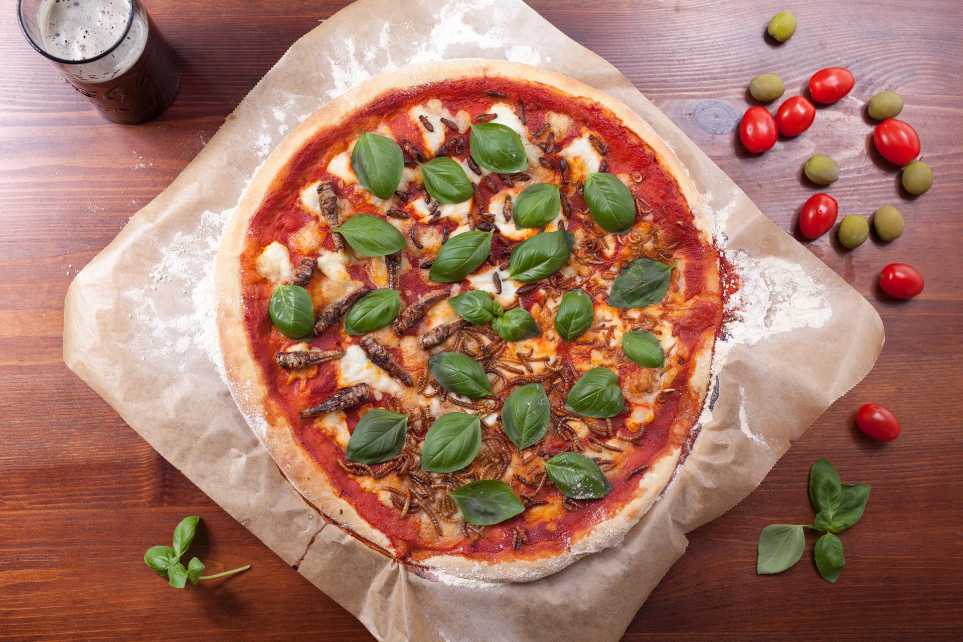 Pizza Ento mit Wanderheuschrecken, Hausgrillen, Buffalowürmern und Mehlwürmern.